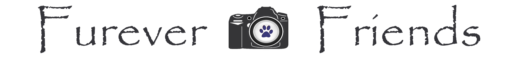 logo-1800-200.png