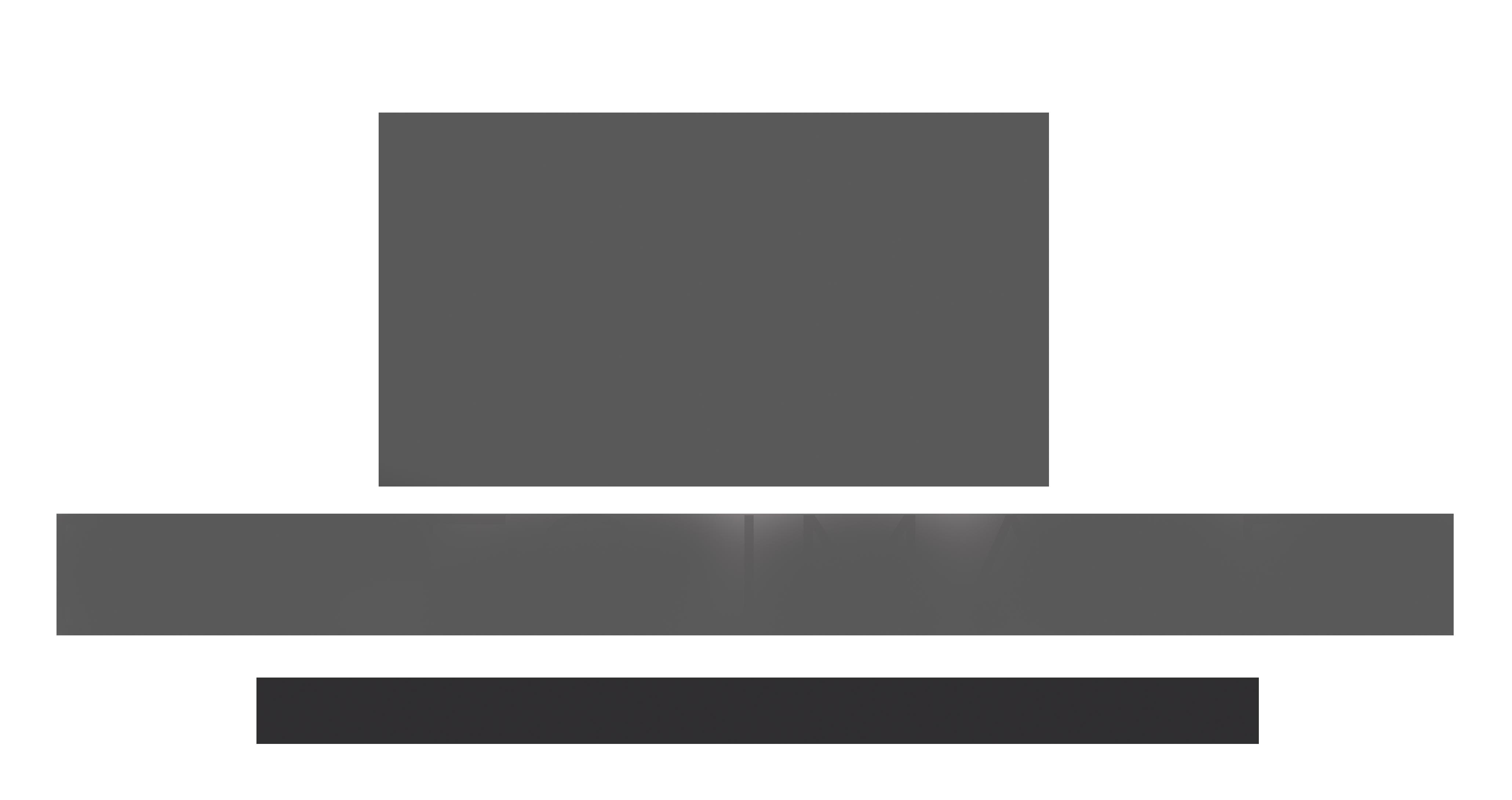 EI logo grey4.png